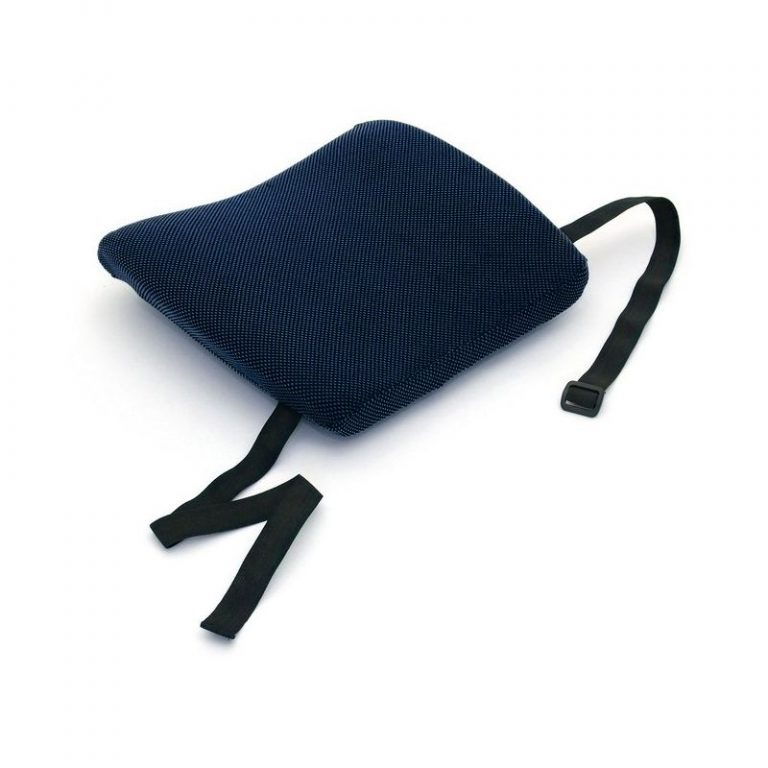coussin lombaire back
